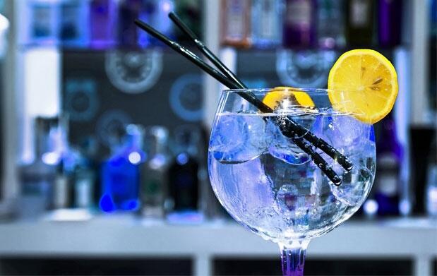 Cata de Ginebras Premium en Baly Club