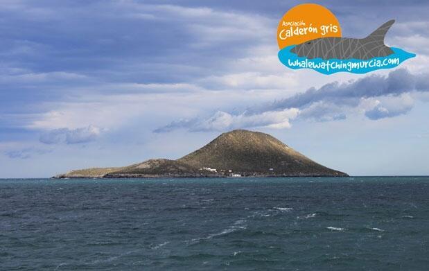Excursión velero Mar Menor y senderismo