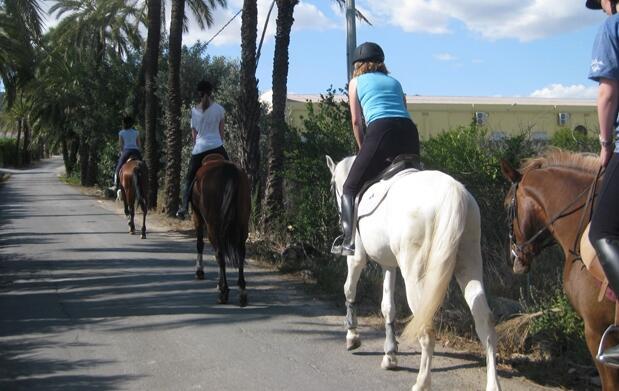 Paseos a caballo de 1 hora por sólo 9€