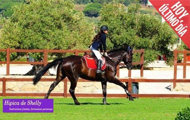 Regala 4 clases para montar a caballo