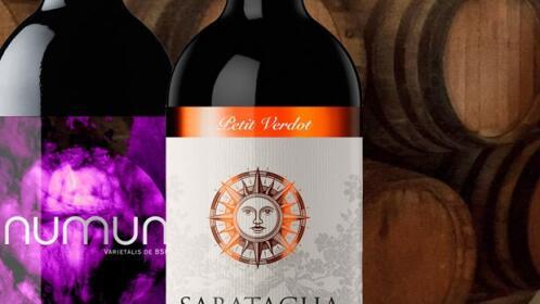 Cata vinos Monastrell BSI