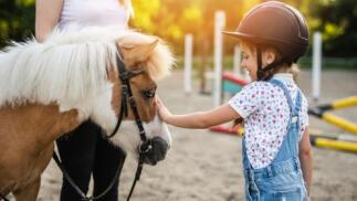 Clases con ponis en Cartagena