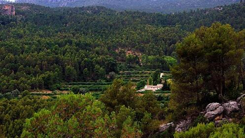 Ecoturismo en Cortijo Los Gorros-Moratalla
