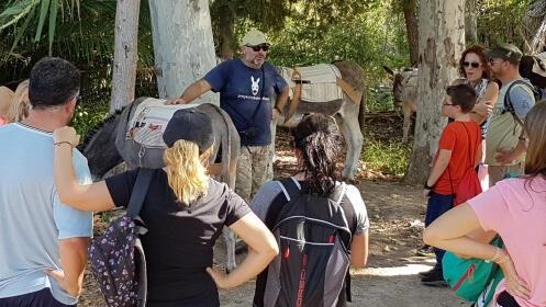Jornada etnográfica con burros en las Norias-Valle de Ricote