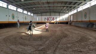 ¡Vuelta al cole en Cuesta Blanca! 4 clases de equitación 20€