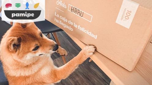 Pamipe: pienso personalizado para un mes perro grande (+25kg)